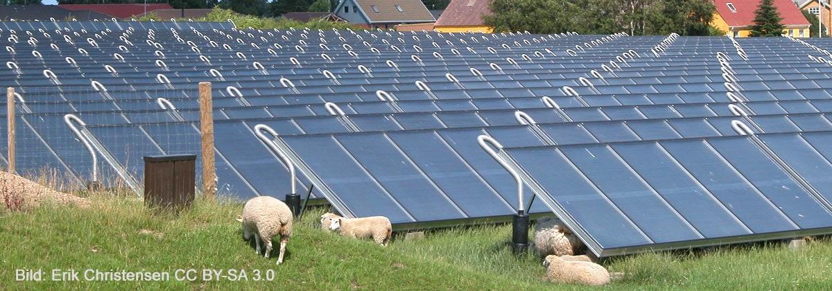 Solarthermie Anlage Freifläche